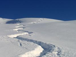 Ski hors traces en rando avec le bureau des guides de haute montagne du Queyras